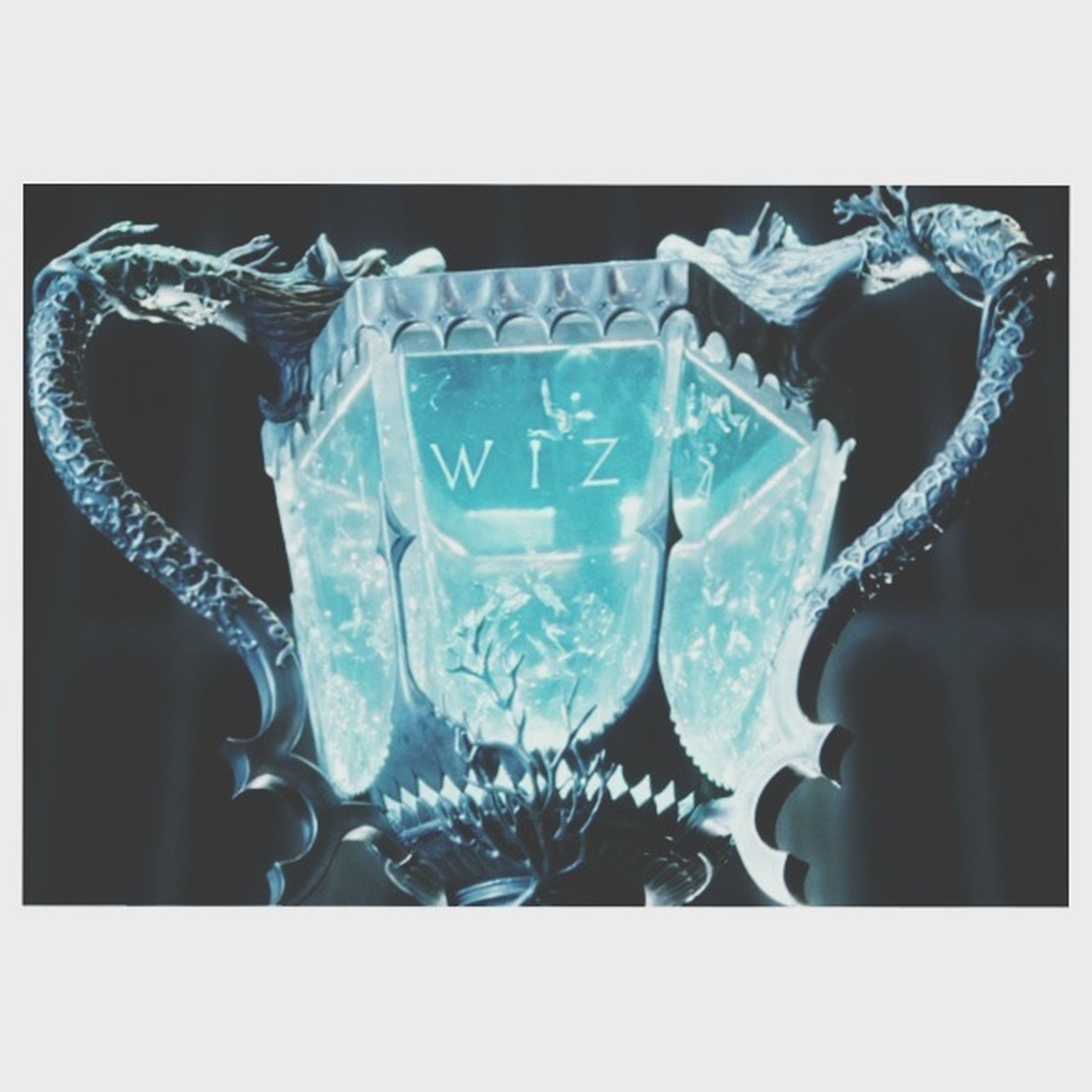 Triwizardcup Harrypotterandthegobletoffire