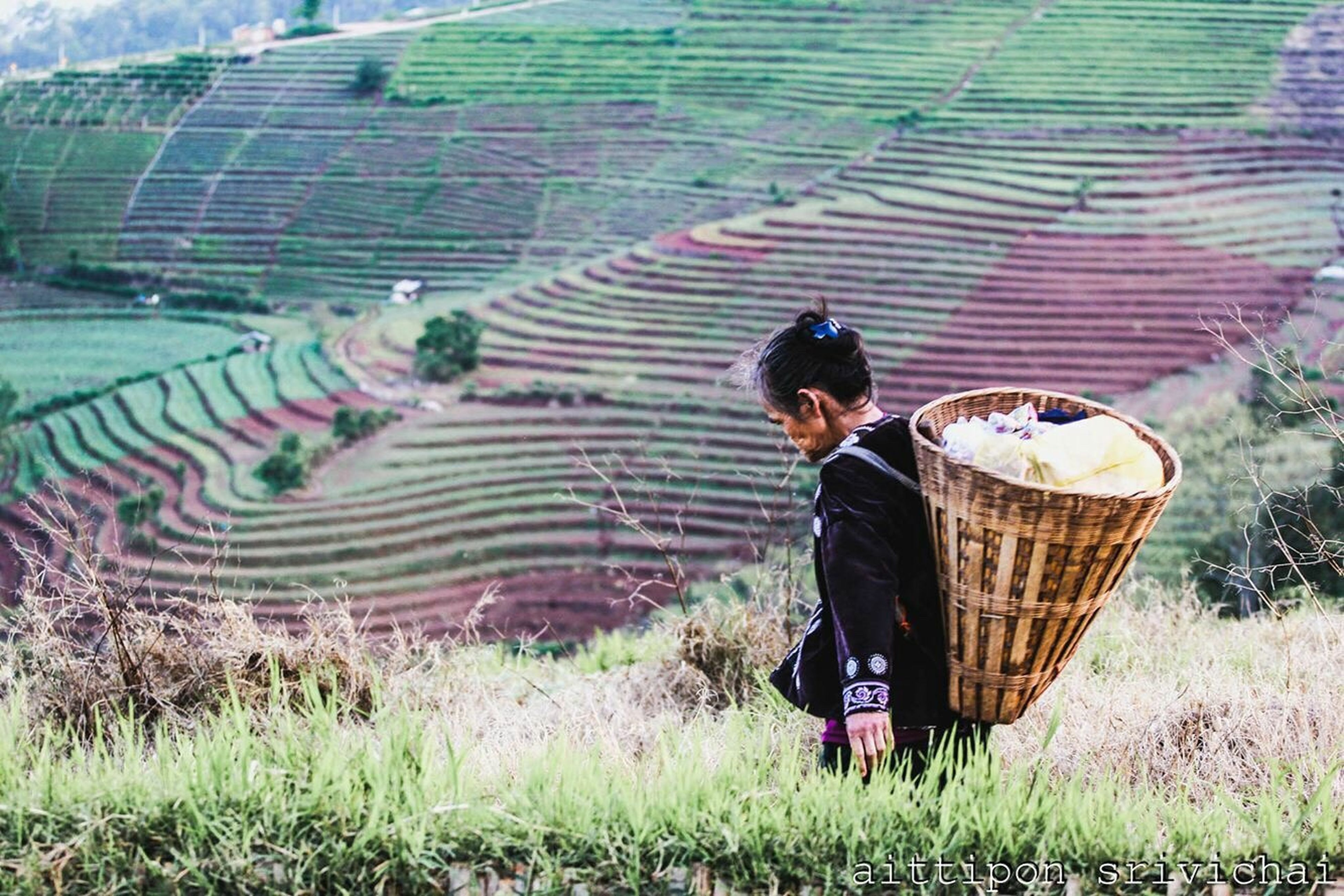 basket, real people, field, outdoors, one person, full length, day, nature, adult, people, adults only