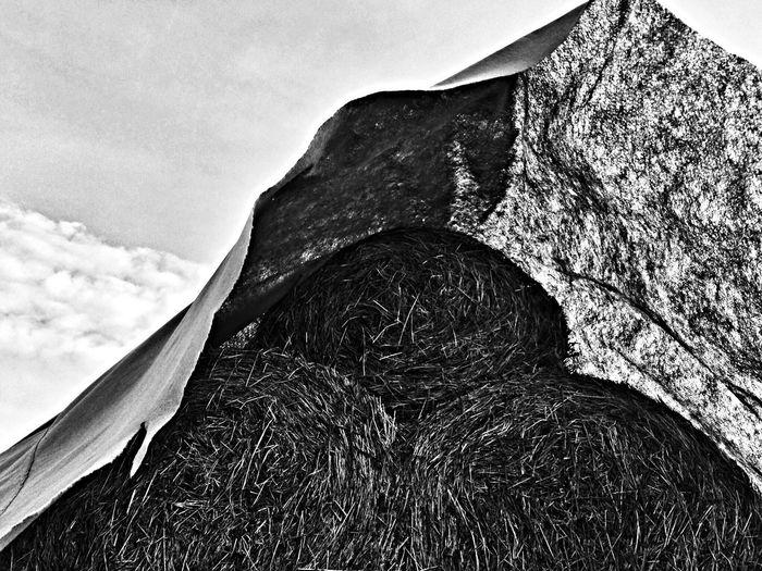 Blackandwhite Light And Shadow Monochrome Landscape