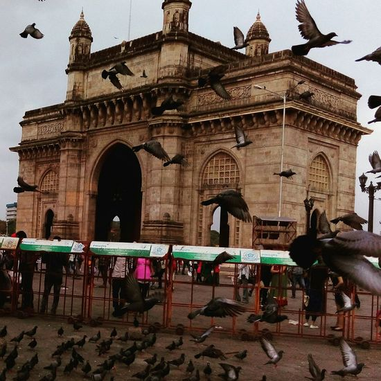 Gateway of India Enjoying Life Photography Hello World Enjoying Life Travel Taking Photos Mumbai_in_clicks Mumbailove MumbaiDiaries