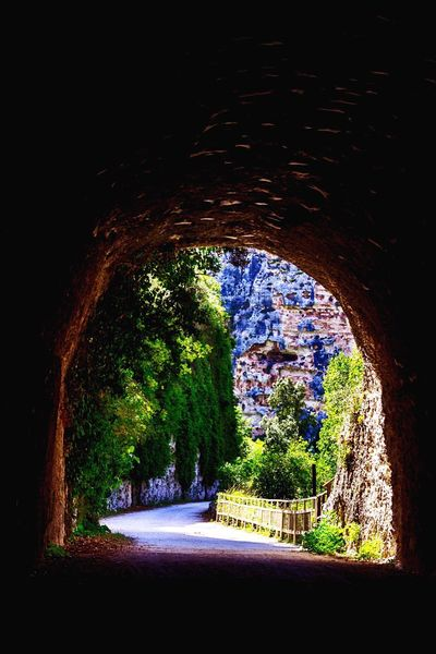 Pantalica Light At The End Of The Tunnel Tunnel Tree Nature Green Color Walking Wildlife Photography RNO Riserva Naturale Nature Photography Excursion Sicily Mountain Siracusa Green Nature Outdoors Beauty In Nature Wildlife Wildlife & Nature Siciliabedda Beautiful Place Gallery Scenics Travel Destinations