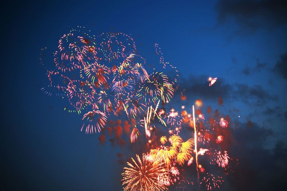 2015  Fire Firework Fireworks Flower Japan Night Sky Summer Tokyo Tokyo Bay 東京湾花火大会 花火