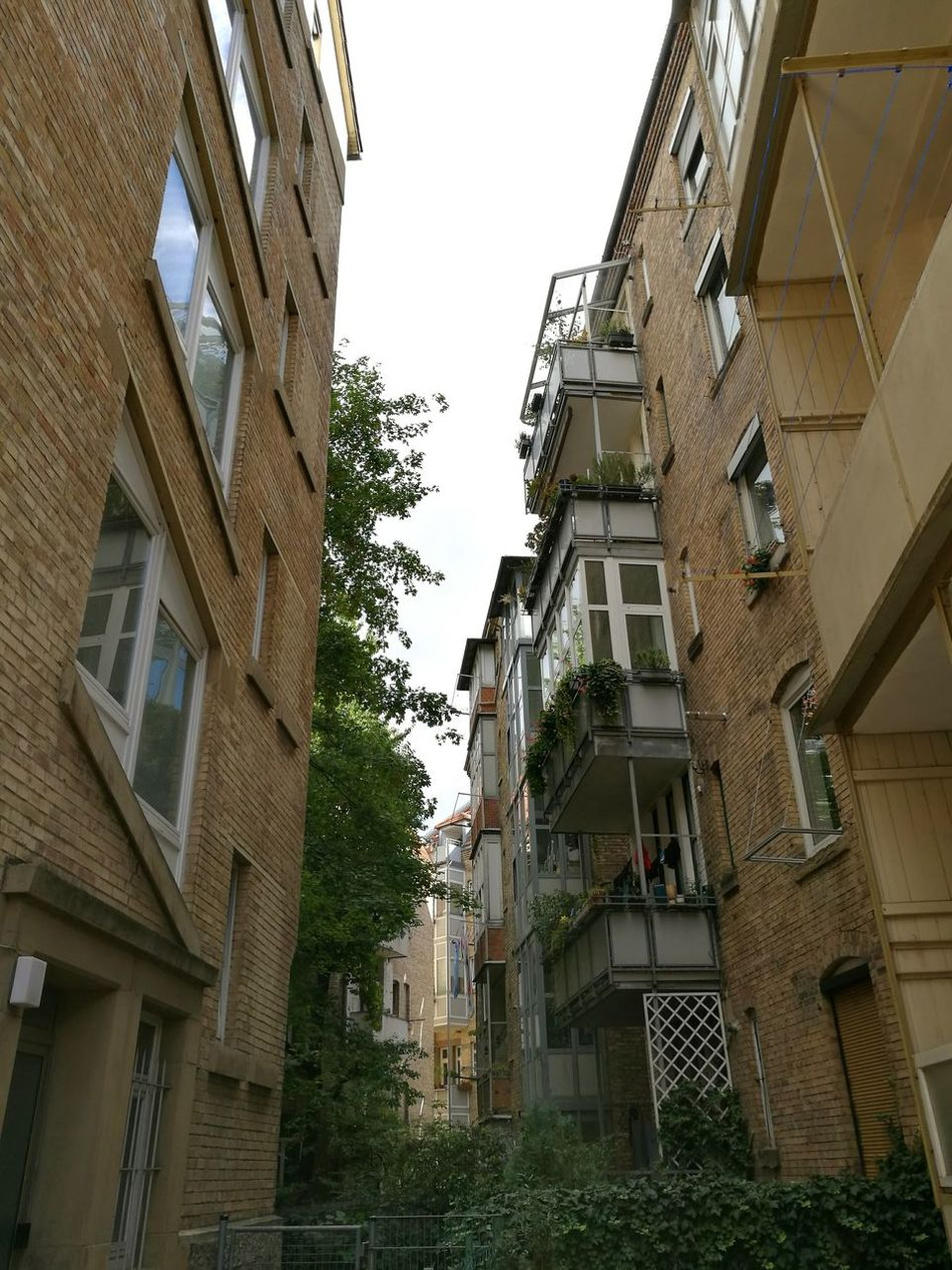 Backyard view in Stuttgart. Architecture Architectural Detail Buildings Stuttgart View Into The Backyard Stuttgartmobilephotographers Art Nouveau Architecture Architecture_collection Art Nouveau Style Art Nouveau Buildings Old Buildings Architecturelovers Backyard
