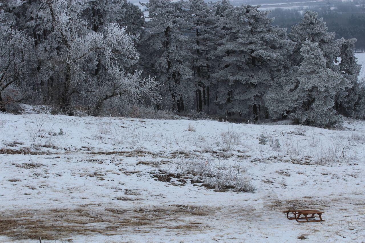 Rural Scene In Winter