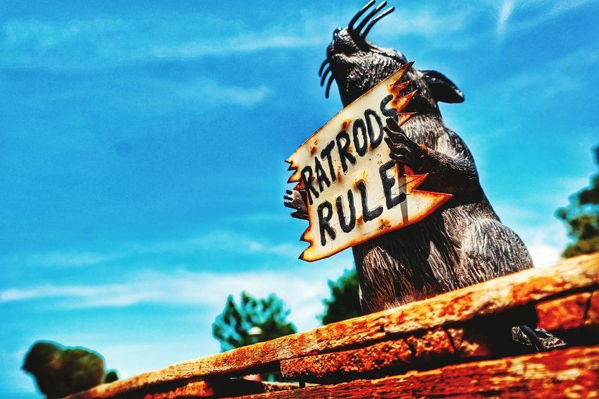 RatRod Rat Rod America Merica Rat