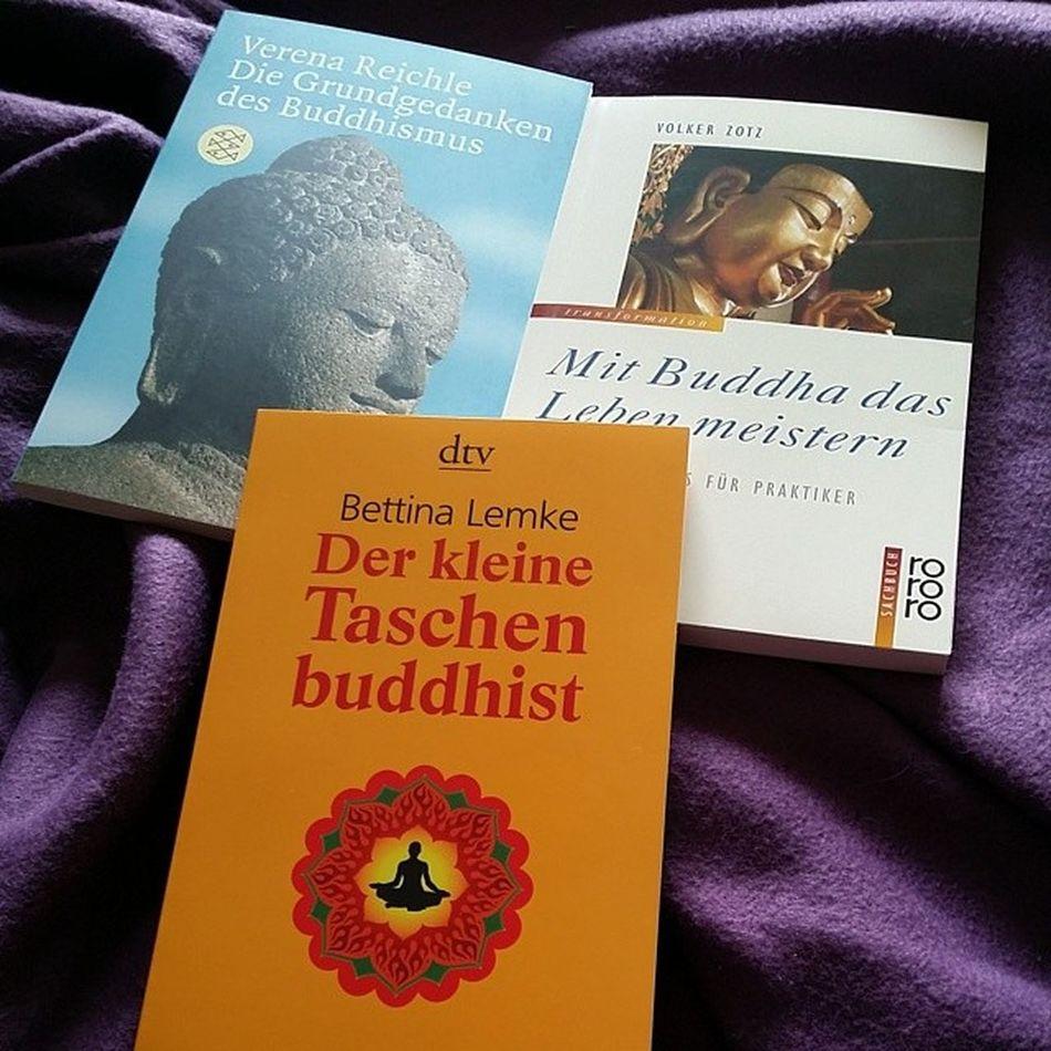 Bisschen Lektüre neben der juristerei Lesen Buddha Buddhismus Dertaschenbuddhist