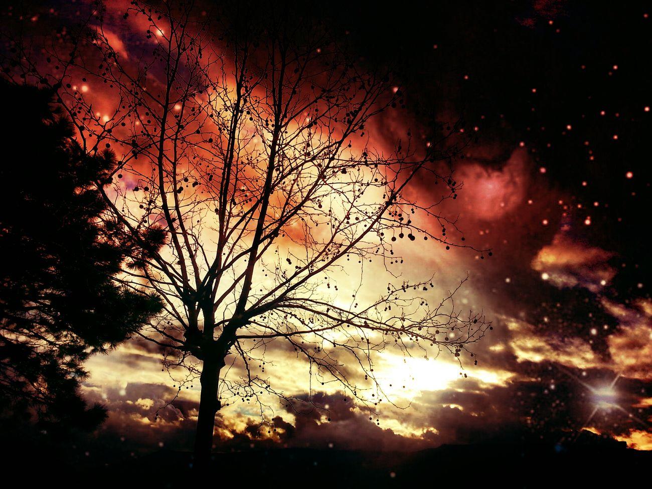 quand le ciel est en feu... bonne journée :) Santu Petru Sun_collection Sky Sunset_collection