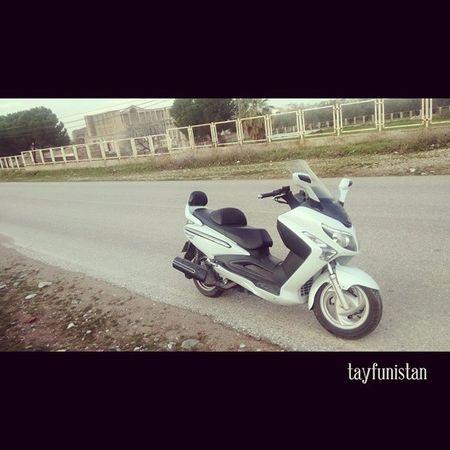 SYM Sardes Lydia Moto maxi scooter bikerman
