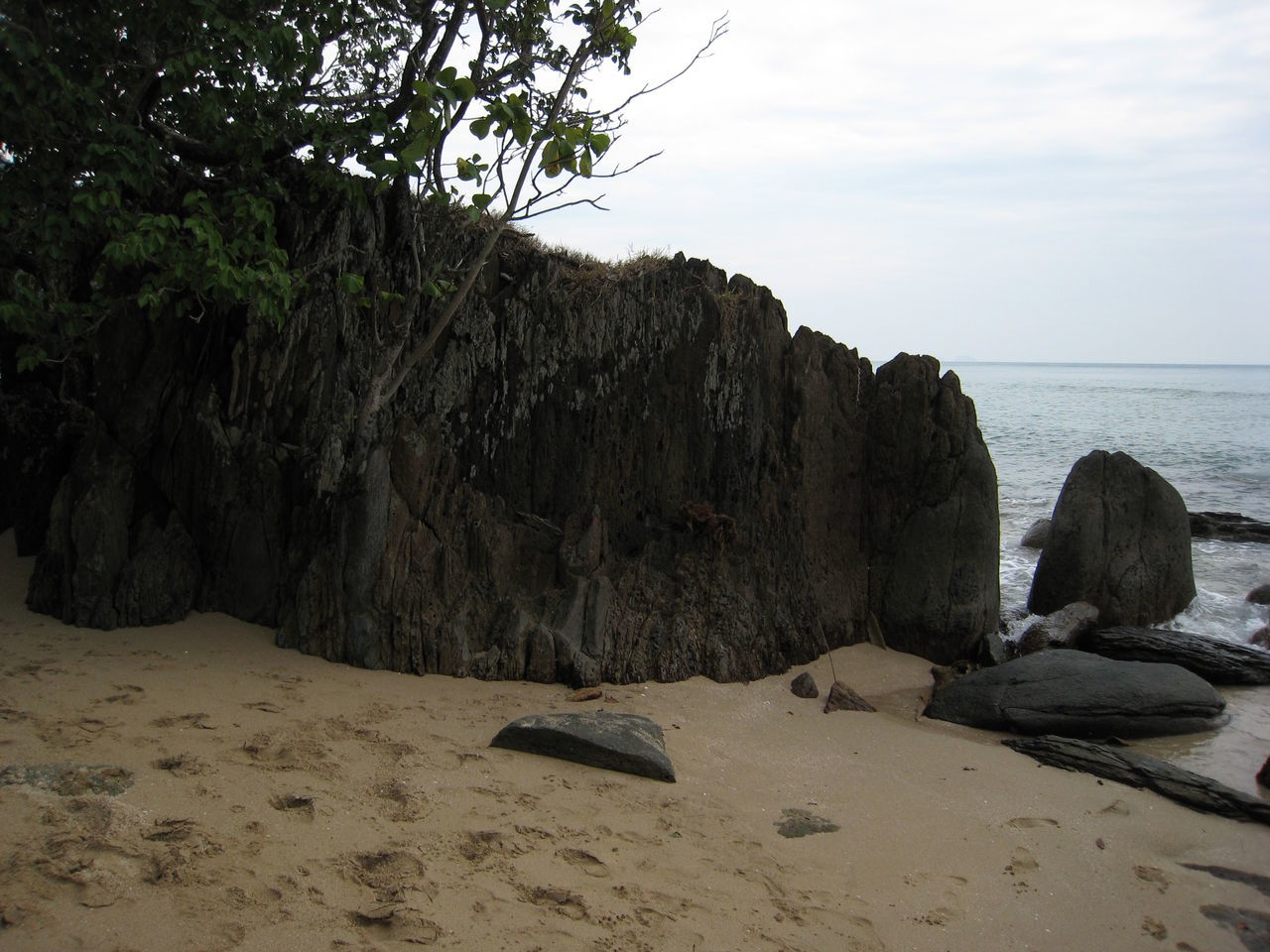 sea, rock - object, nature, beach, sand, rock formation, horizon over water, beauty in nature, water, sky, scenics, tranquility, tranquil scene, no people, outdoors, day, tree