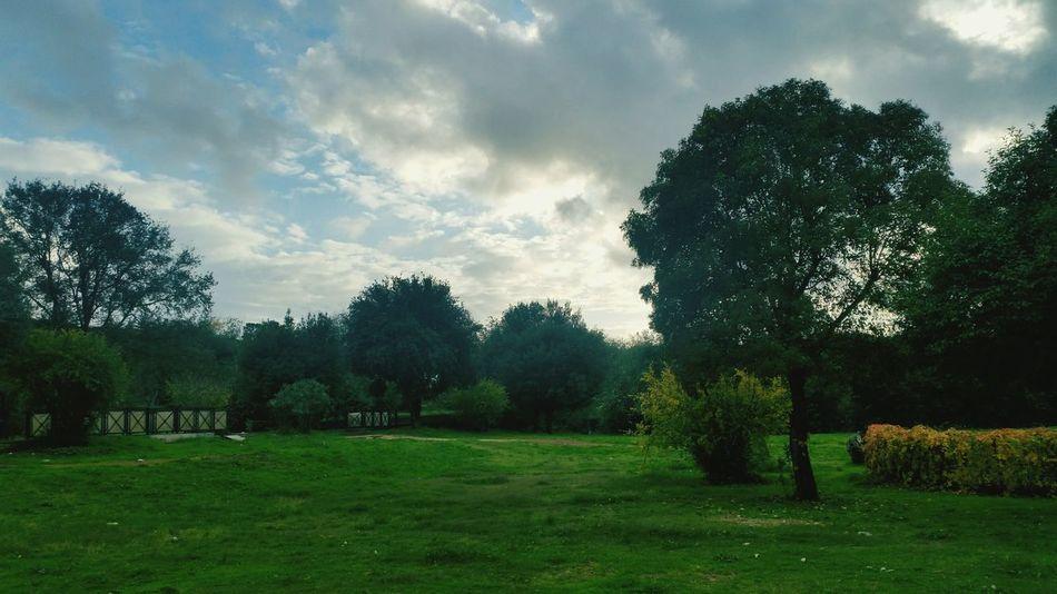 Italy, Rome, November 2016 Villa Borghese Park