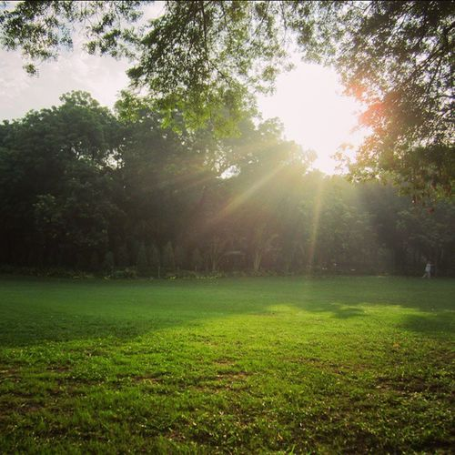 Sunrise SundayMornings