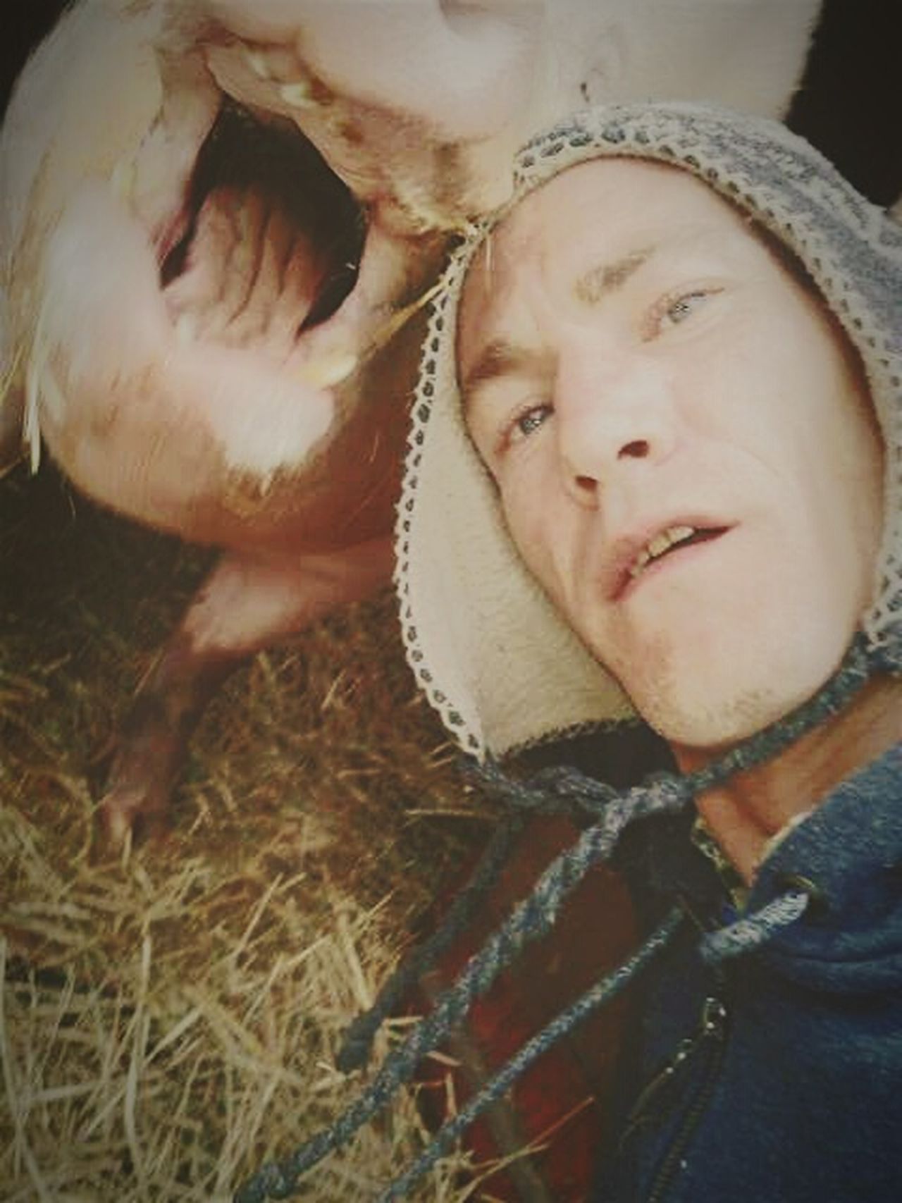 Pig Bestfriend Percypigs me mate percy when I took selfie he gave biggest smile ever lol x That's Me Check This Out Hello World Love Without Boundaries Cheese! Taking Photos Check This Out That's Me