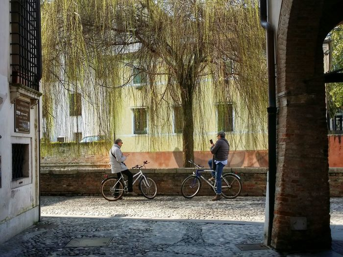 Showcase March Celebrate Your Ride Ride And Navigate Questioning The Oracle Communication Breakdown Alone Together Treviso Italy Travel Photography Travel Traveling Mobile Photography Art Fineart Architecture Historical Buildings Willows Shadows Mobile Editing