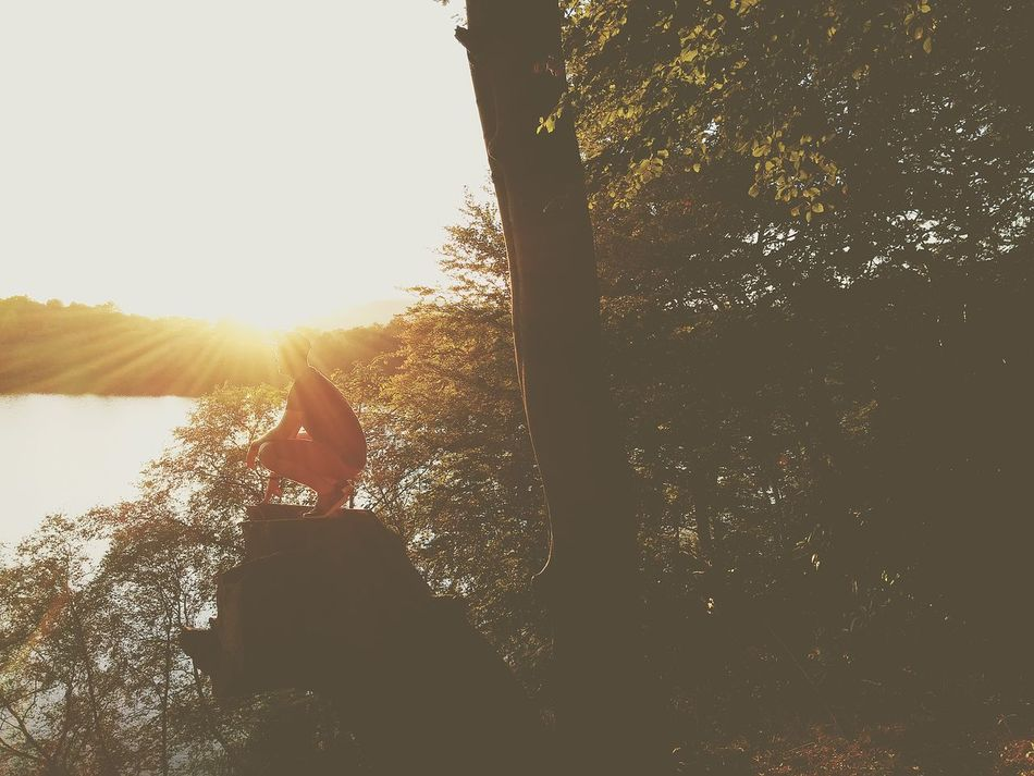 Milngavie Sunset First Eyeem Photo Promote Beginnerphotographer