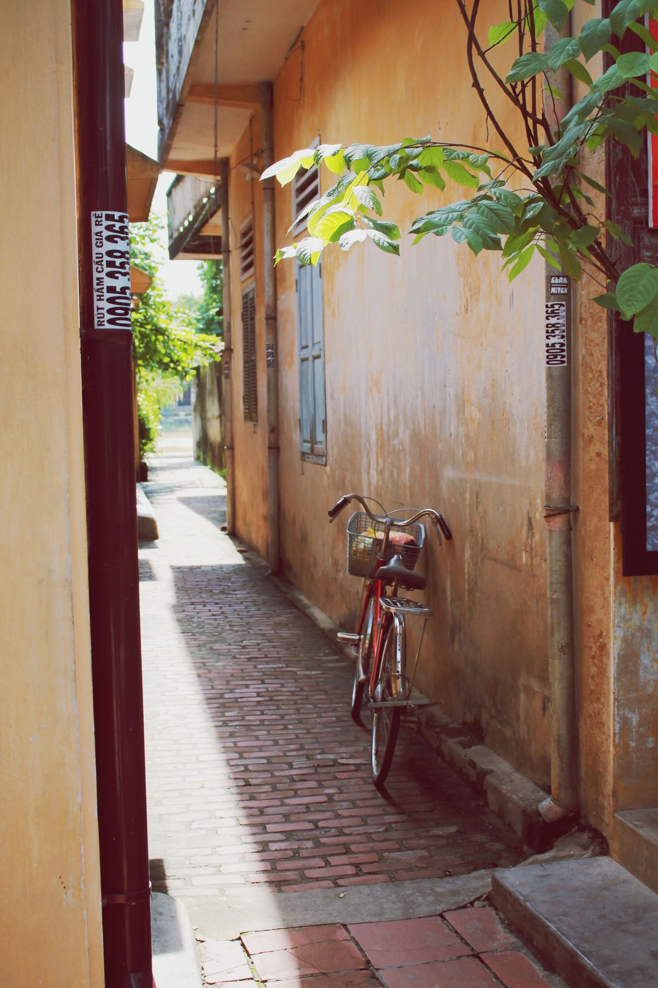 Hoi An Bicycle Architecture Built Structure Building Exterior No People Doorway Outdoors Day