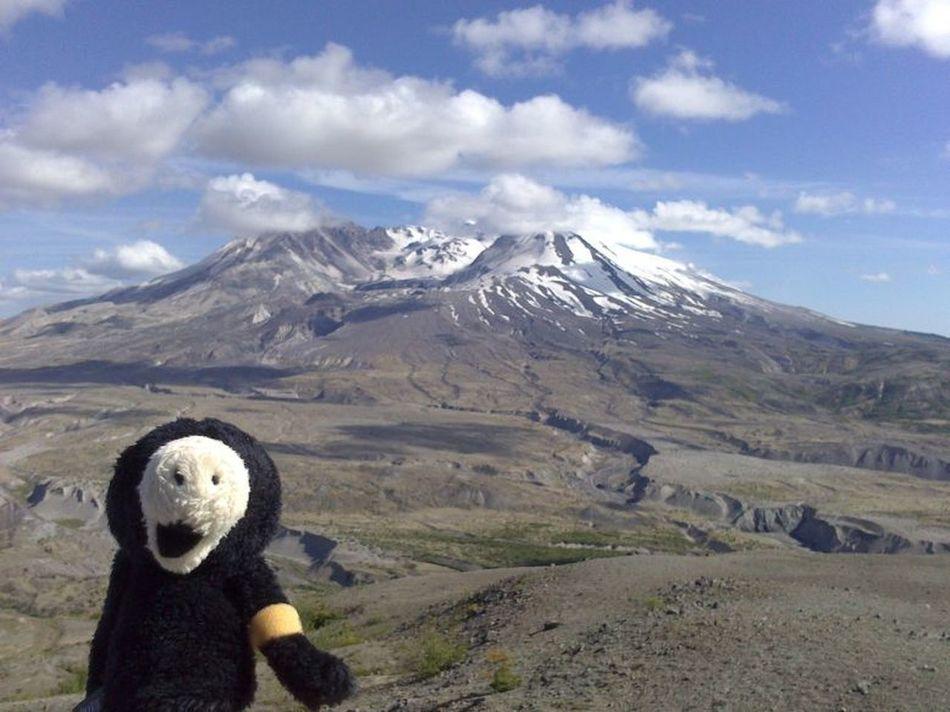 de maulwurfn be de mountn st helens Mount St. Helens Maulwurf