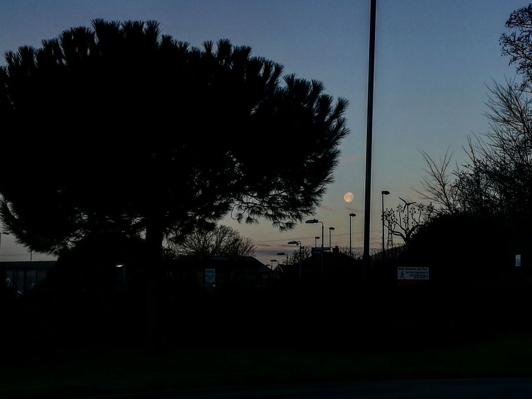 EyeEmNewHere Outdoors United Kingdom Sky And Clouds Portsmouth New Year Around The World Moonshot Moonset Mornings Morning View Morning Sky Sky Tree Cold Days Cold Morning Wintertime Cosham EyeEmNewHere