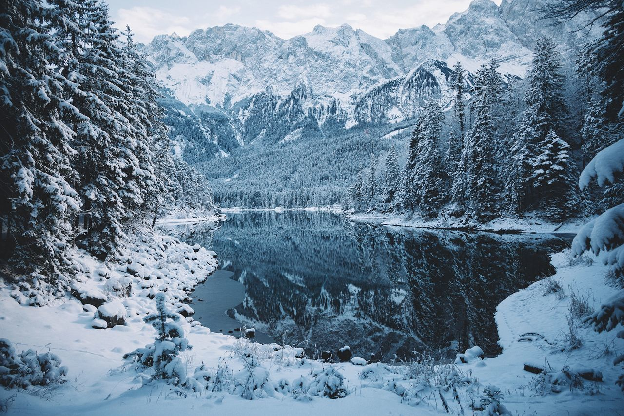 Winter at lake Eibsee Vscofilm Sunrise Snow Cold Temperature Winter Mountain Tree Nature Beauty In Nature Tranquil Scene Scenics Mountain Range Tranquility Frozen Landscape No People Outdoors Snowing Day Sky