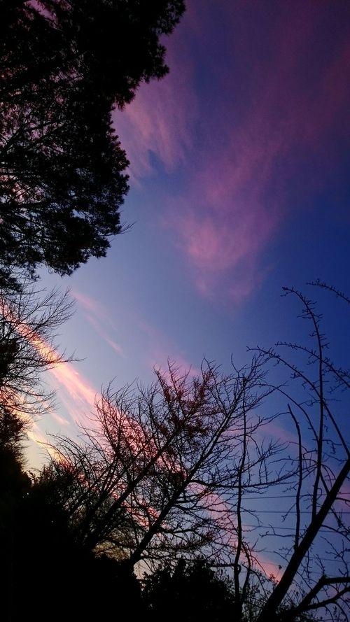 空 夕焼けこやけ ゆうやけ 夕陽 ゆうやけこやけ部 Sony Xperia Z3 ゆうひ