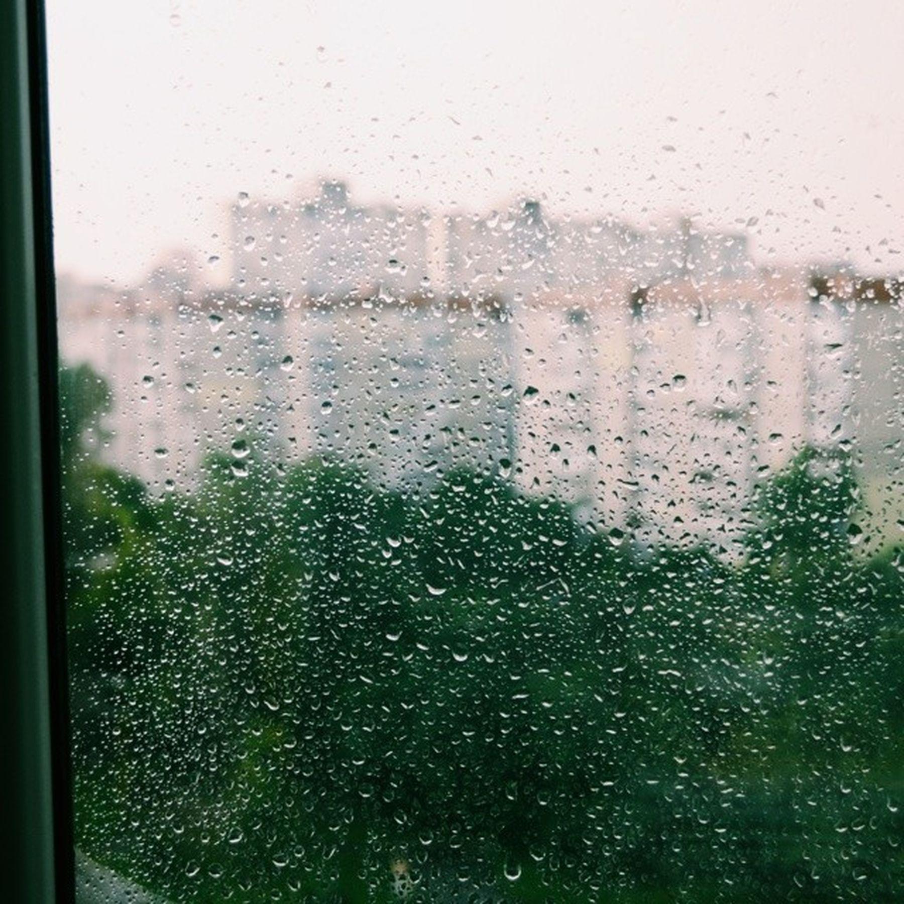 Дощ... Rain дощ Dropsofrain