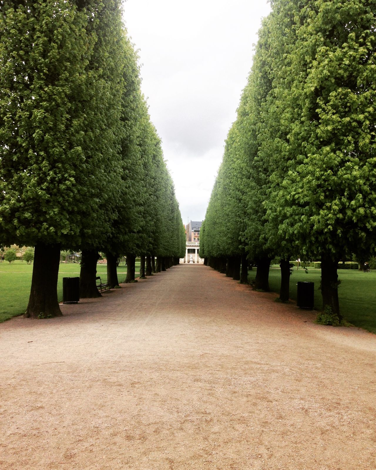Copenhagen Danish Day Denmark Diminishing Perspective Empty Footpath Grass Green Color Growth In A Row Nature Park Park - Man Made Space Rosenborg Castle Rosenborg Slot Rosenborgcastlepark Sky The Way Forward Tranquil Scene Tranquility Tree Treelined Vanishing Point Walkway