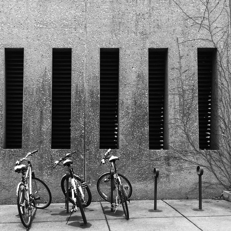 Bicycle Winter Snow Campus Cornell University Black And White IPhoneography Nature Geometric Shapes Urban Geometry