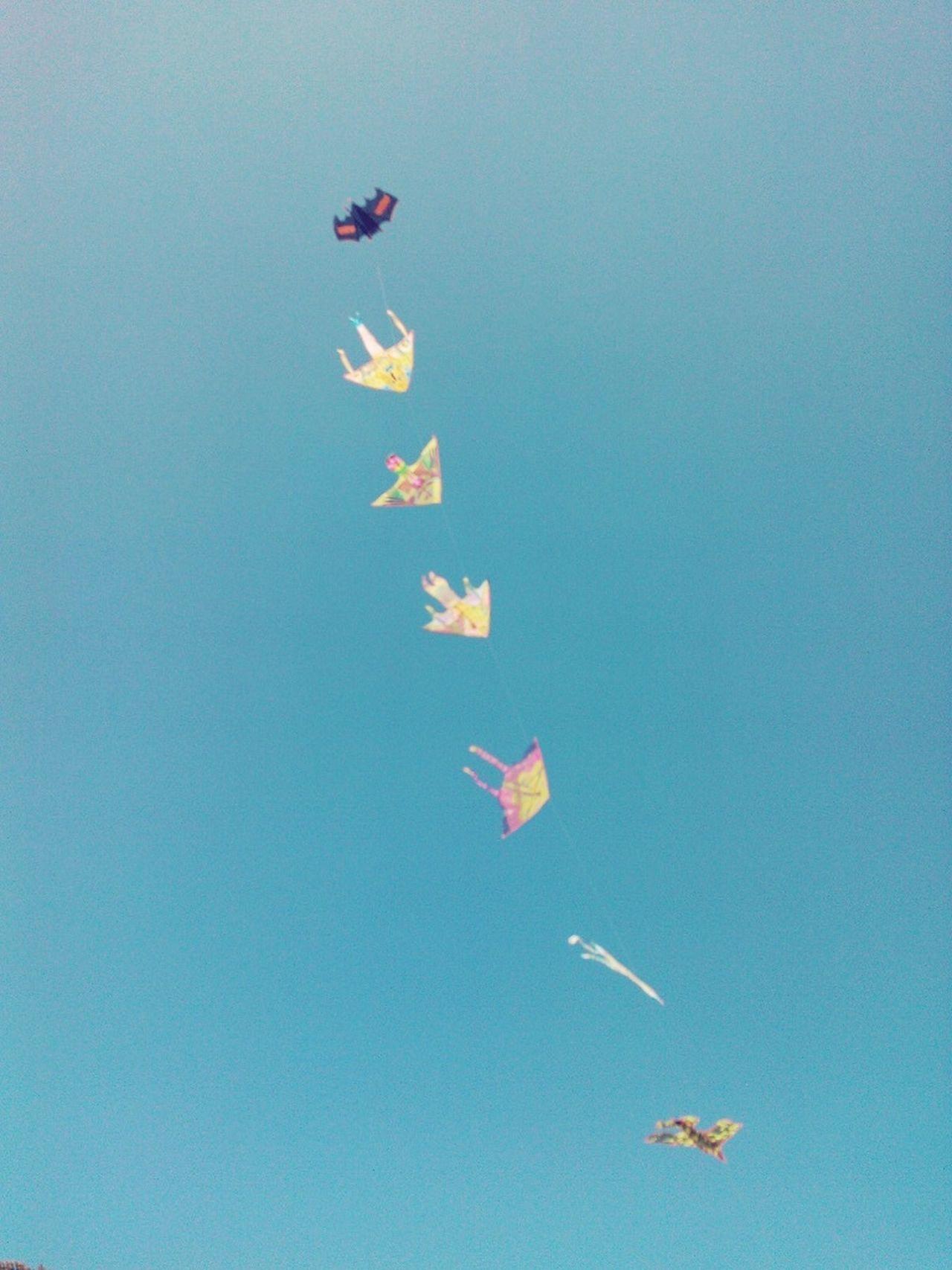 Flying A Kite Summer Enjoying Life Blue Sky