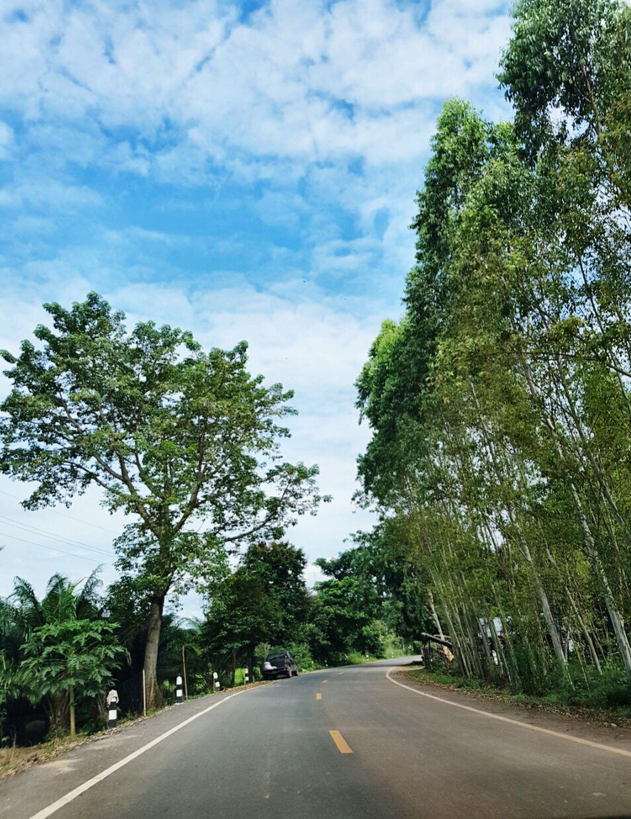 Road Street Tree The Way Forward Sky Nature Outdoors Phone Photography