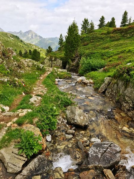 French Alps Alps Creek Brook Stream - Flowing Water Nature Mountain Tree Rock - Object Beauty In Nature Tranquility Tranquil Scene Scenics Non-urban Scene Day Green Color Outdoors River Landscape No People Adventure Water