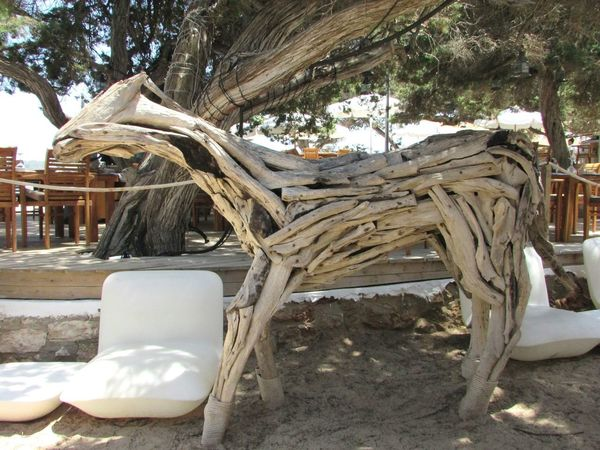 Tree Day Chair Outdoors No People Nature