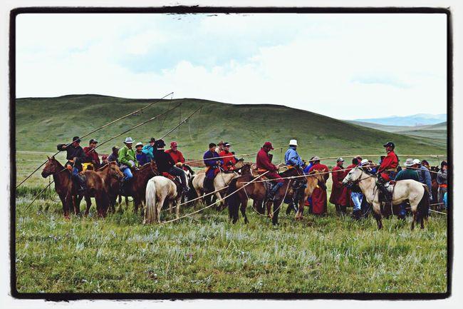 Horseman Mongolia Countr