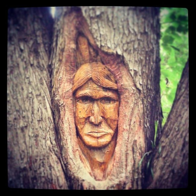 Treeface Art Awesome CarvingTalent Tree People 43 Golden Moments