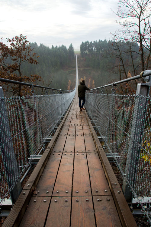 The amazing Geierlay bridge in Germany with some morning fog and my mate heading to the other side... Adult Adults Only Beauty In Nature Bridge Bridge - Man Made Structure Connection Day Fog Footbridge Geierlay Leisure Activity Men Morning Mosel Nature One Man Only One Person Only Men Outdoors People Railing Rear View Sky The Way Forward Tree