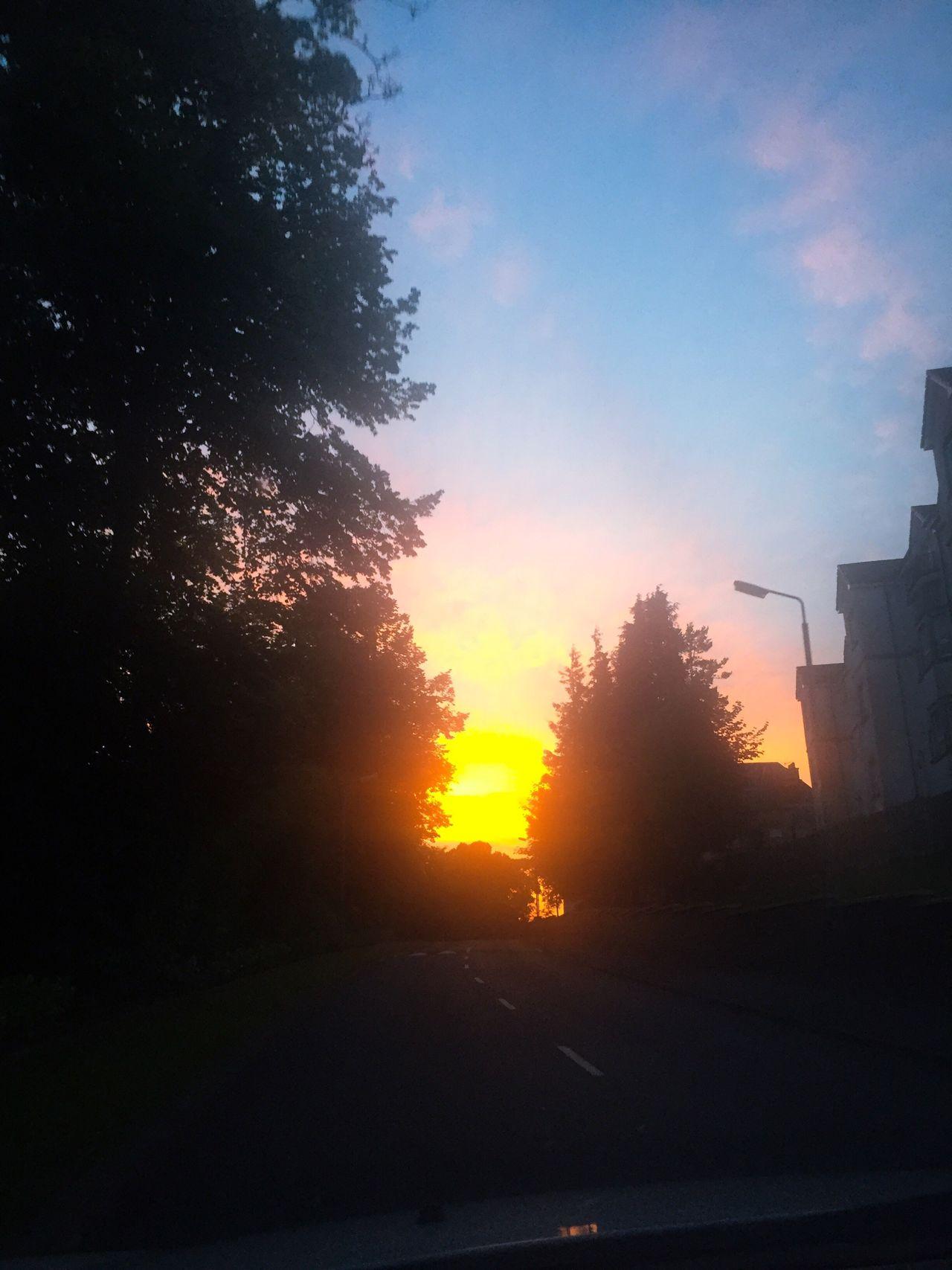 Coming home last night! Sunset Sky Trees Shadow Summer #summertime #sun #TagsForLikes.com #hot #sunny #warm #fun #beautiful #sky #clearskys #season #seasons #instagood #instasummer #photooftheday #nature #TFLers #clearsky #bluesky #vacationtime #weather #summerweather #sunshine #summertimeshine