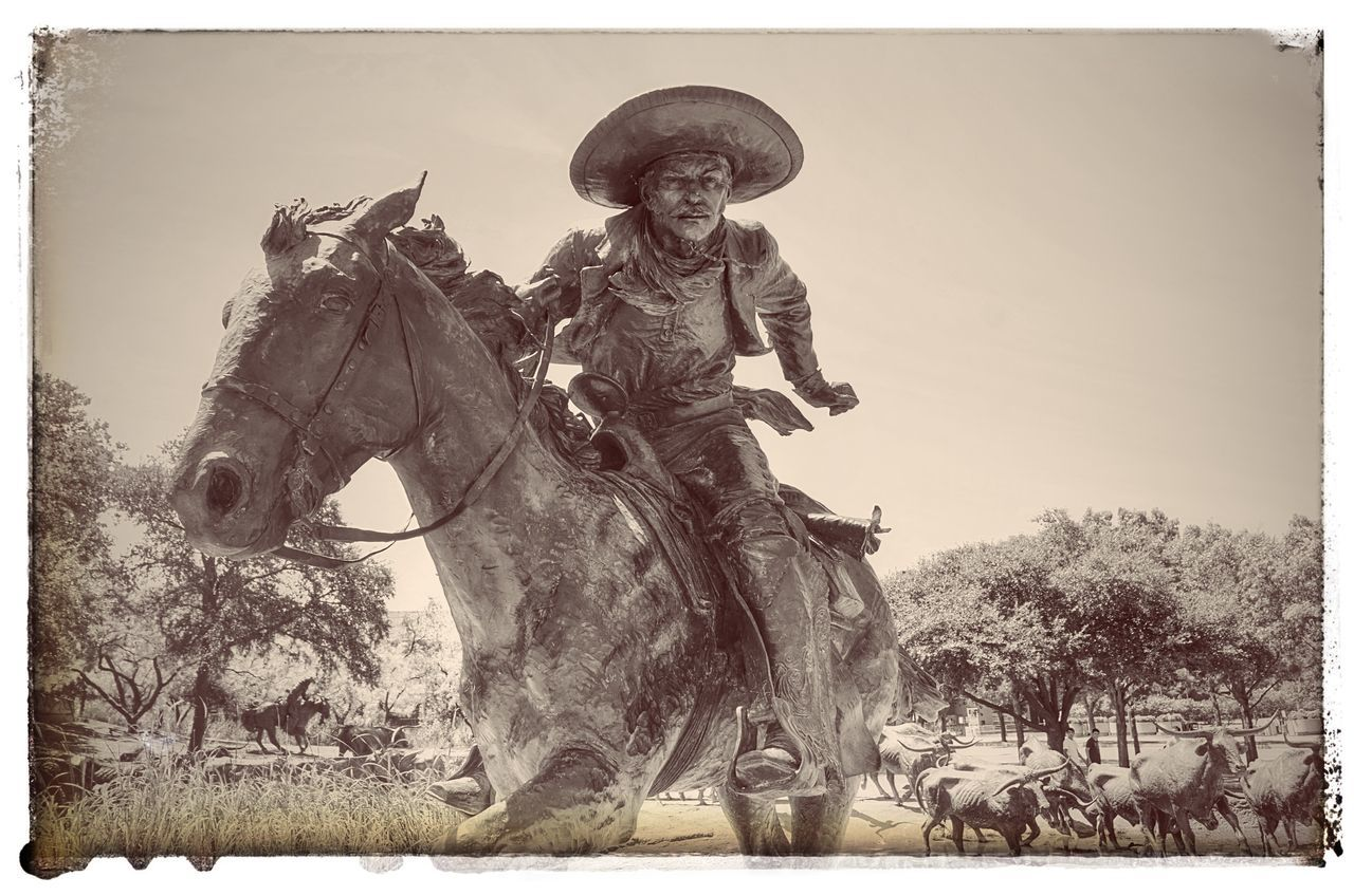 The Vaquero. Branch Cattle Cattle Drive Dallas, Texas, U Domestic Animals Drawing Horse Landmark Life Outdoors Pioneer Plaza Sculpting A Perfect Body Sculpture Shawnee Trail Statue The Vaquer Tourist Attraction  Warrior - Person Wrangler