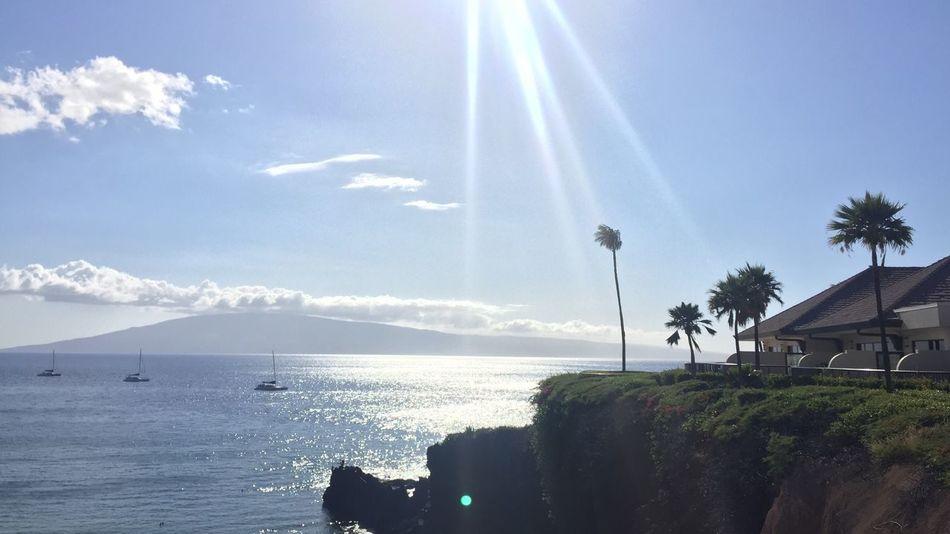 Hawaii Maui Maui Hawaii Mauiphotography Aloha Coast Coastline Nature Sea Palms View Resort Sheraton Sheraton Hotel