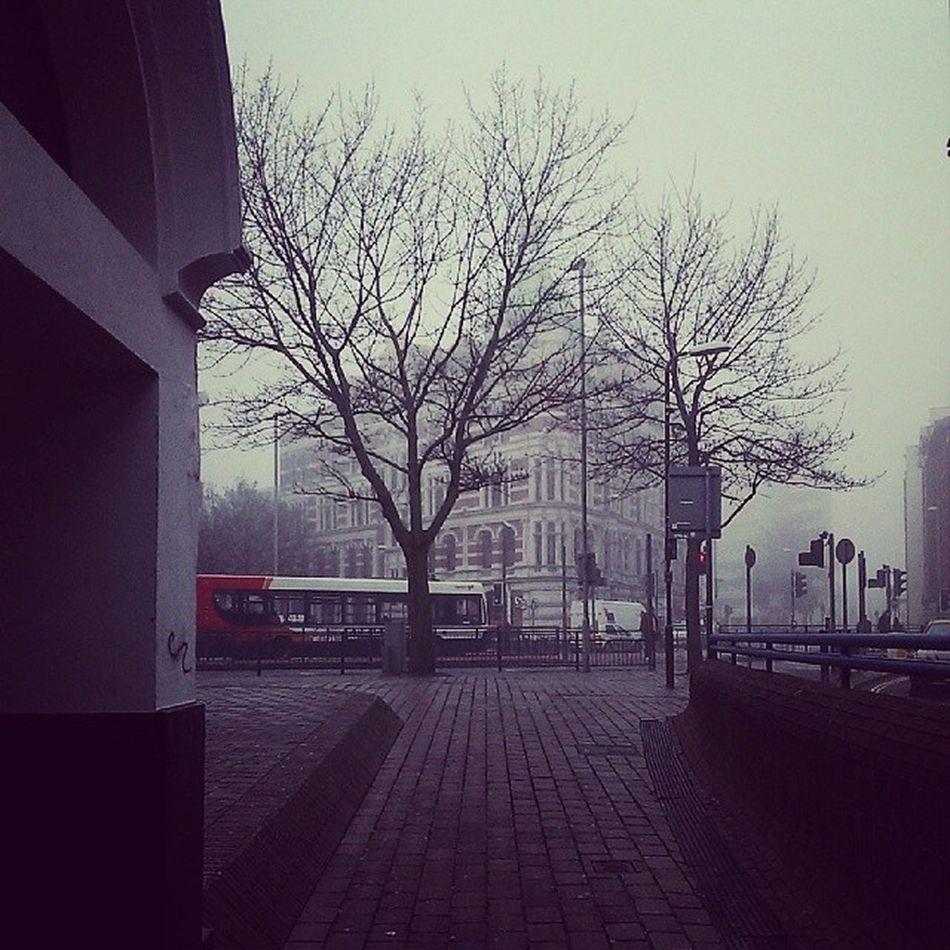 Tempo bom hoje, não está frio temperatura 8 graus.