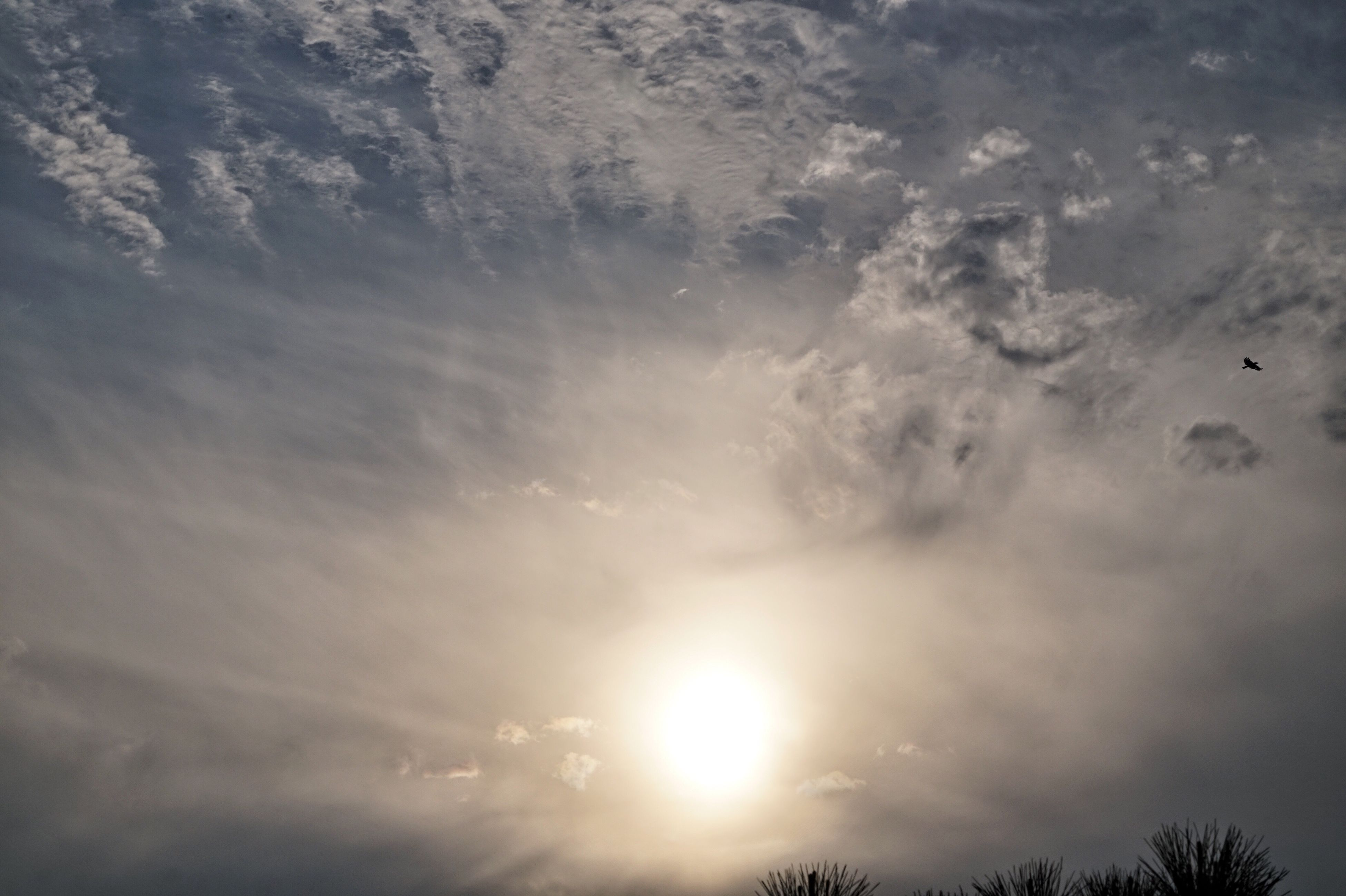 sky, sunlight, cloud - sky, low angle view, sun, nature, no people, sunset, outdoors, tranquility, beauty in nature, sunbeam, day