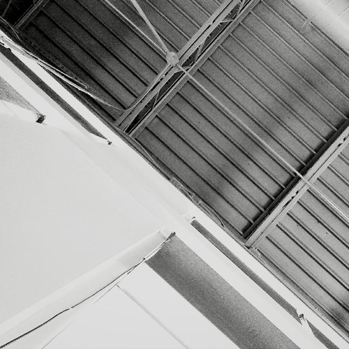 Ceiling Lines Supernormal