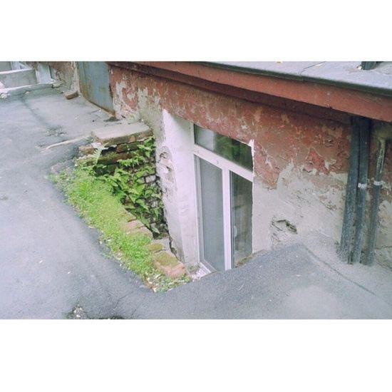 Классный вид из окна Vladivostok лакшерилайф охуенныйвиднамост