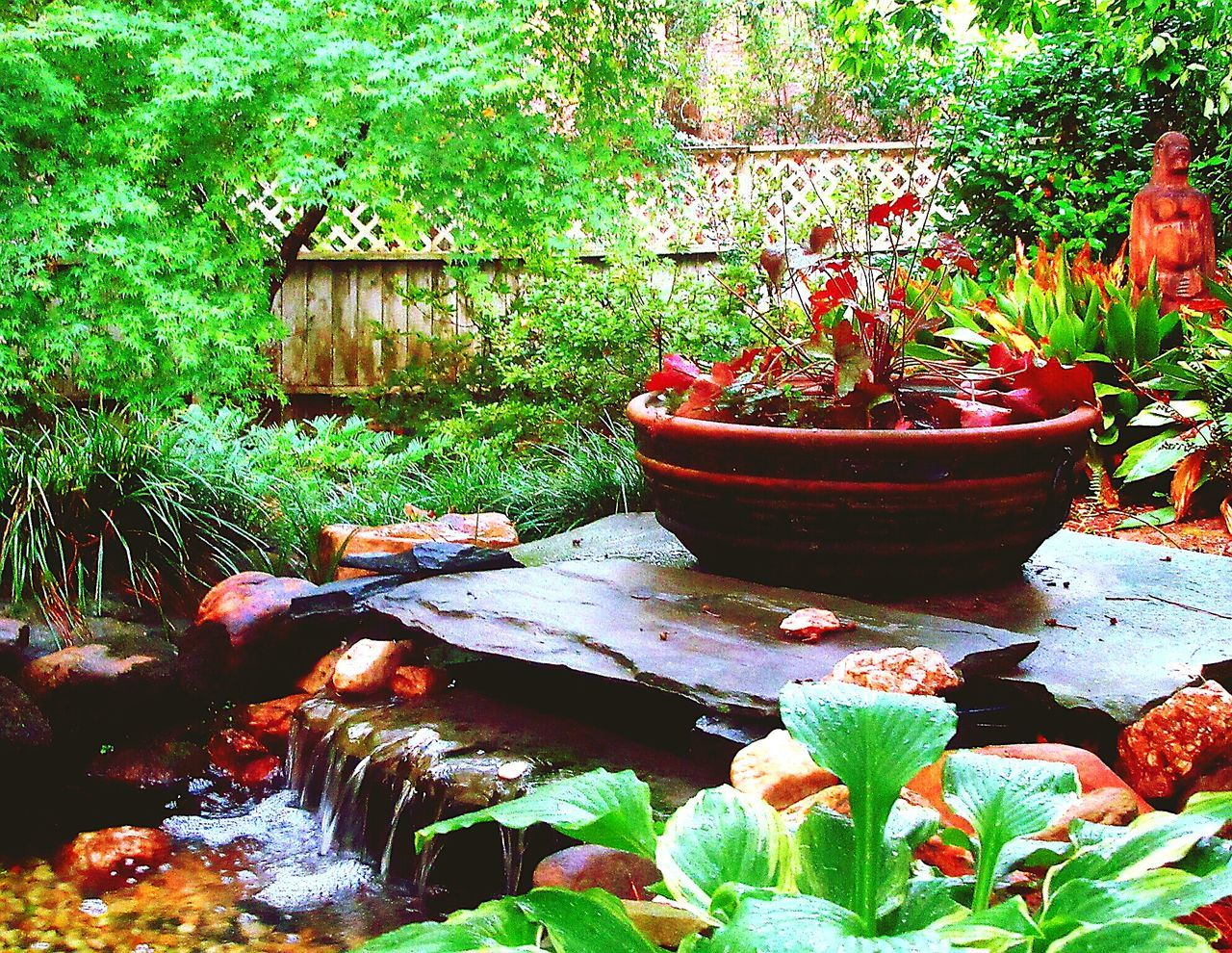 Oriental Style Waterscape Garden Colour Of Life Backyard Zen Diy Project Koi Pond In The Garden Koi Pond Waterfalls Asian Culture Plant Photography Flowers,Plants & Garden Two Green Thumbs Namasté Sessions Rejuvenated Mind Body And Soul By Nature Spiritual Nature Meditation Tranquil Scene Outdoors Waterfalls Nature Heals Soothing Zen Yardscape Connected By Travel Lost In The Landscape