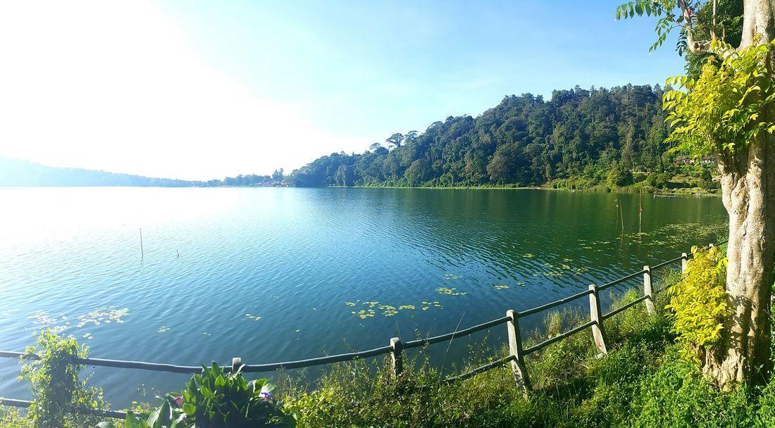 Baratan lake Forest Jungle Livingthedream Agushariantophotography Nature Green Swim