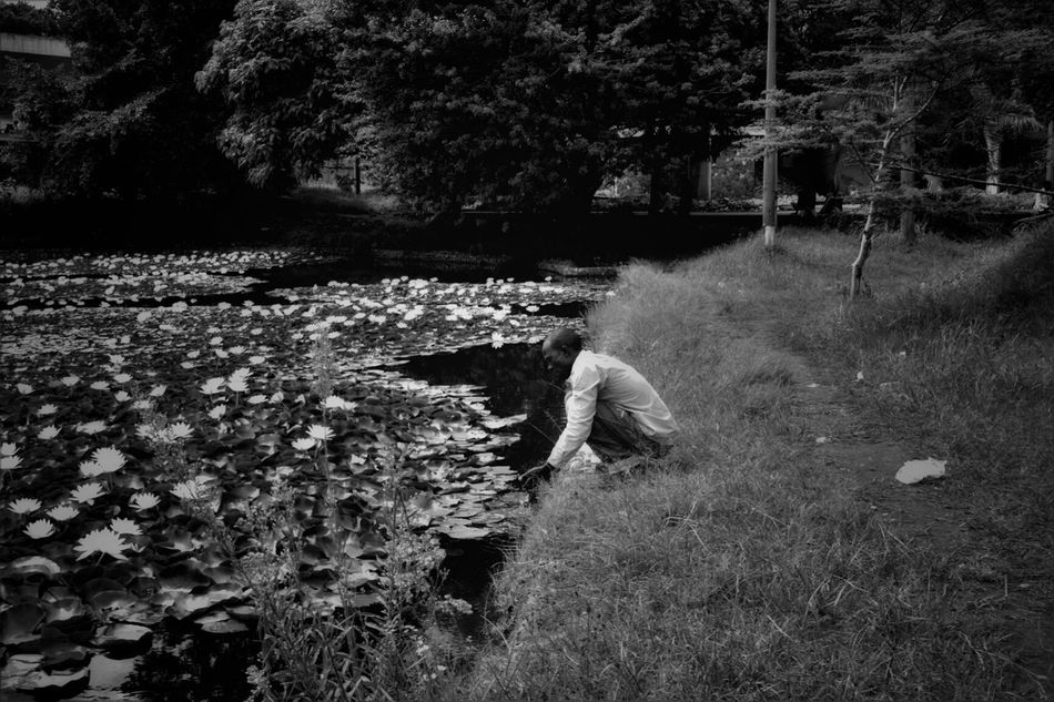 A man washes his hands in a pond full of water lilies. Sometimes the simplest captured moments are the most surreal. Nairobi Kenya Monochrome Beauty Streetphoto_bw Nature Simplicity Life Africa Kenya Ponds Beautifulpeople