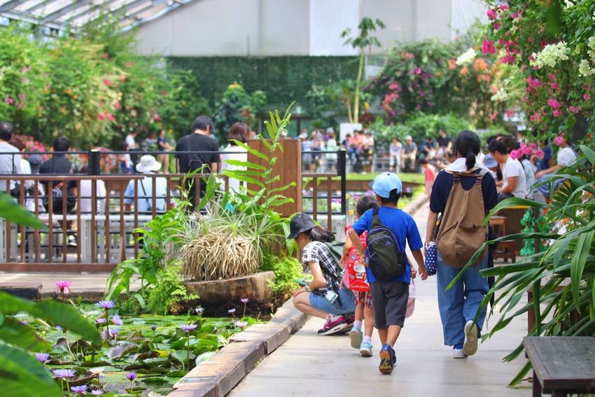 Real People Men Full Length Women Day Walking Outdoors Plant Large Group Of People Lifestyles Togetherness Occupation Growth Building Exterior Tree Nature Flower Freshness Adult People