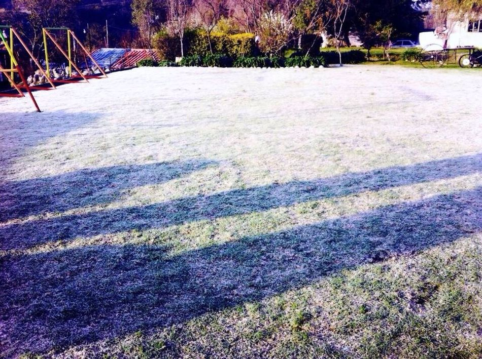White grass... Winterwhitewithcanvaspop Nature Hello World