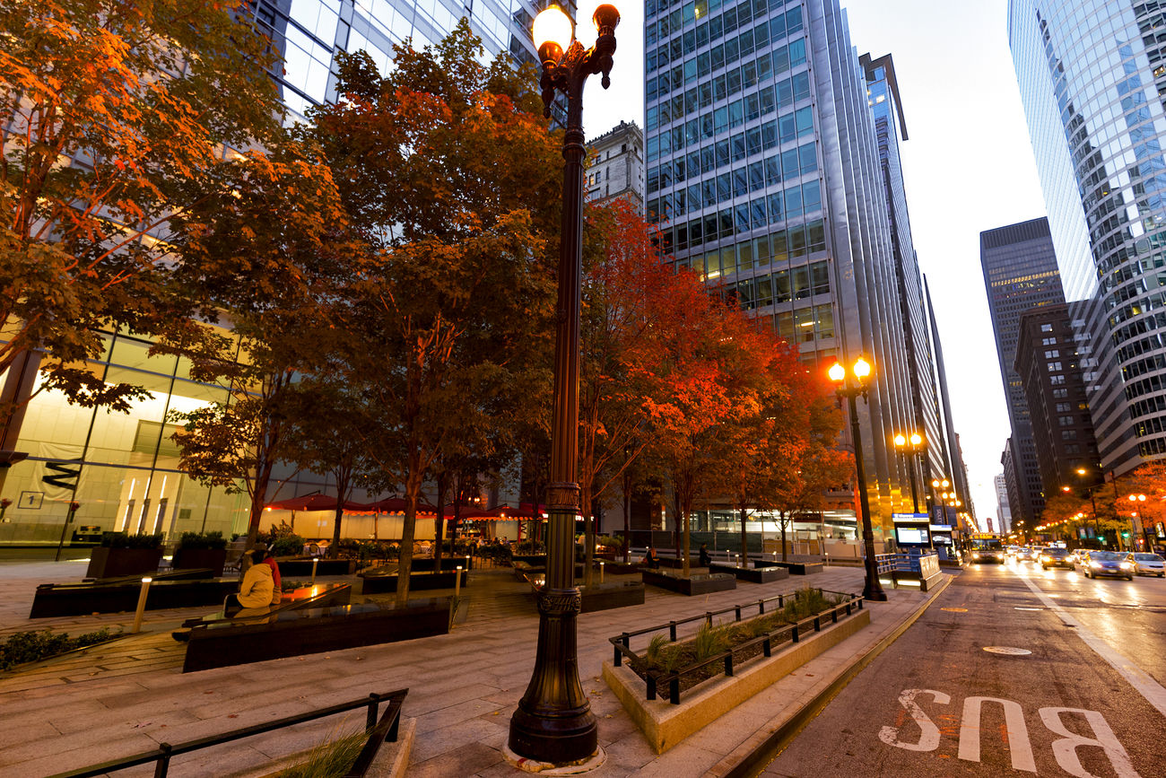 Architecture City Outdoors Downtown District Illuminated Chicago Exploring Canon Canon 6D Canonphotography TeamCanon Fall Autumn City Life Amateurphotography Outdoor Photography Cityscape Beautyinnature