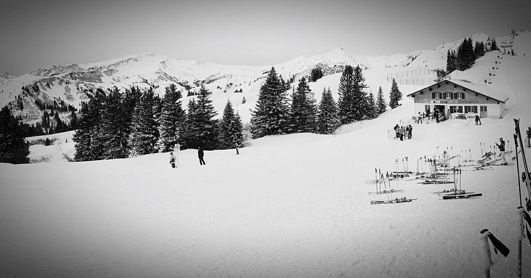 Snow Mountain Snowboard Winter Cold Temperature