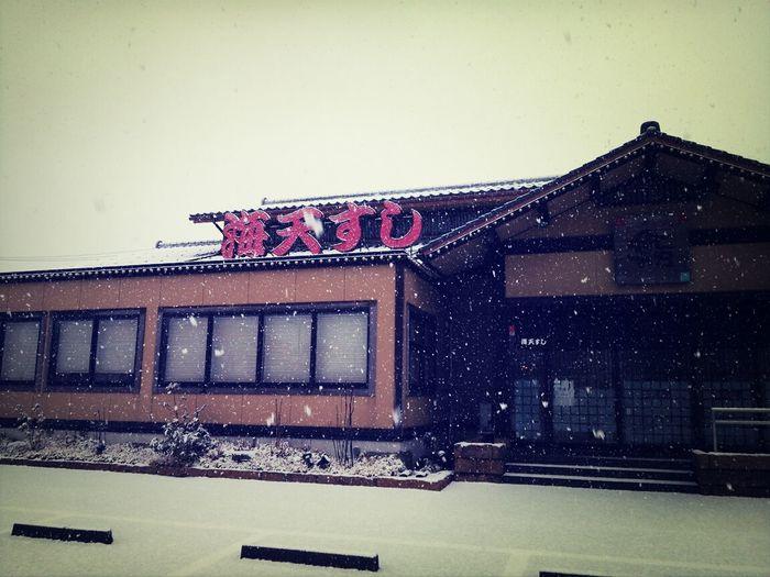 Sushi Snow Winter