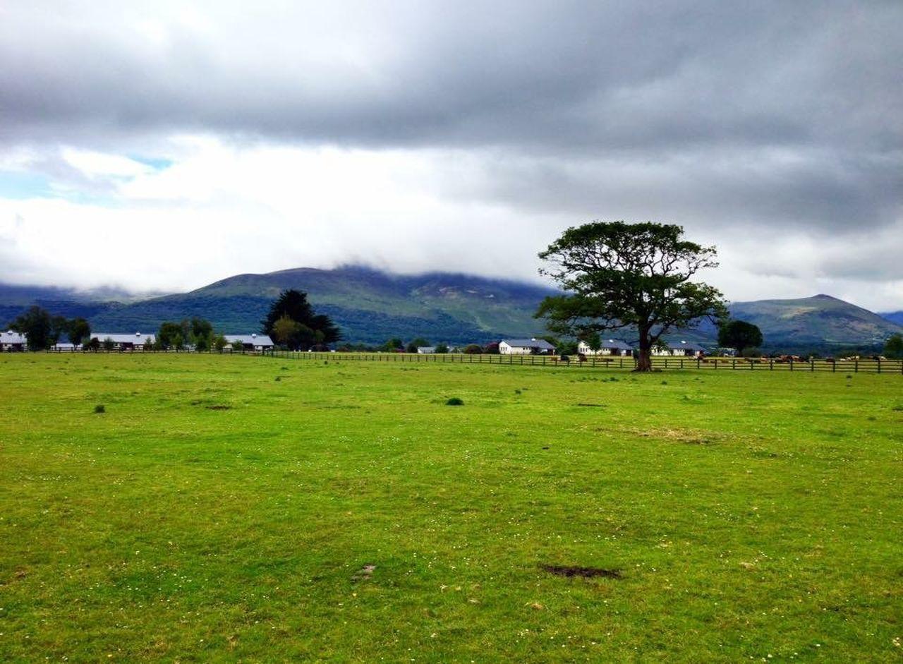 Ireland Scenery