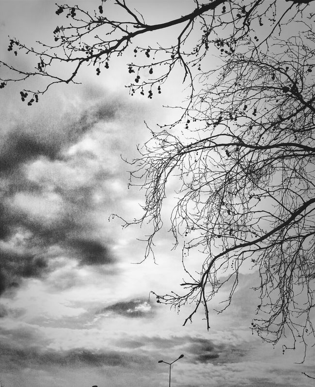 Black & White Eye4photography  Bisgen Bw_collection